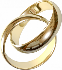 Animazione matrimoni